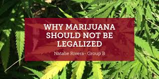 being funny is tough why marijuana should not be legalized essay this does not apply to marijuana since the individual who chooses to use marijuana does so according to his or her own will