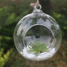 details about fashion candle holder hanging clear globe glass terrarium air plant home decor
