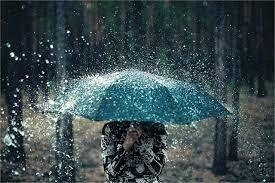 420 Umbrellas | Rain ideas | rain, i love rain, love rain