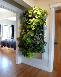Living Wall for Small Space Gardens