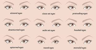 eye shape chart this is what your eye shape says about your personality