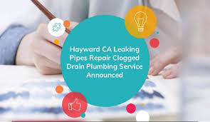 plumbing hayward ca. Interesting Hayward And Plumbing Hayward Ca