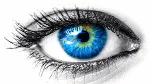 Different Shades Of Blue Eyes Chart 6 Rare And Unique Eye Colors Owlcation