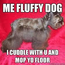 Fluffy Dog memes | quickmeme via Relatably.com