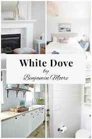 benjamin moore white dove a paint