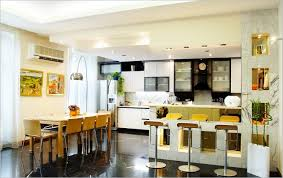 Kitchen Furniture India Indian Kitchen Furniture Photos Best Kitchen Ideas 2017