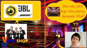 Tìm hiểu về 2 loại loa đình đám được Âm Thanh Việt Nam sử dụng cho dàn  karaoke hd 30m2