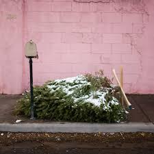 History Of Christmas Trees  Christmas  HISTORYcomWhat Day Do You Take Your Christmas Tree Down On