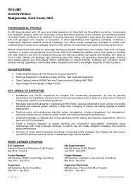 resume of andrew nelson 2016
