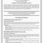 Personal Statement For Resume Resume Personal Statement Lovely The 25 Best Personal Statement