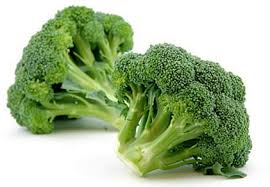 Image result for broccoli image