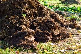 how to use horse manure with no regrets