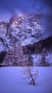 Free Iphone Wallpaper: Tree And Mountains In Snow