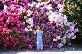 Flower Wall Flower Wall Backdrops Shutterhub