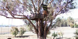 Big Sur Treehouse Hotel  Home Design InspirationsTreehouse Vacation California