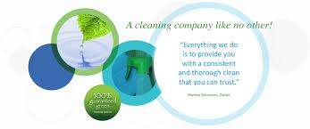 Names For Cleaning Service Business Naturally Clean All Natural Cleaning Service Kitchener Waterloo