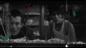 rumble fish blu ray review high def digest rumble fish is a very worthy companion to the outsiders and arguably the best of the four adaptations made from hinton s books