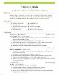 Examples Of Social Work Resumes Social Workers Resume Samples Best