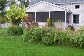 Wildflower Garden Design Enchanting Low Maintenance Landscaping With Wildflowers American Meadows Blog