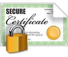 Digital Certificates Our Services In Daryaganj New Delhi