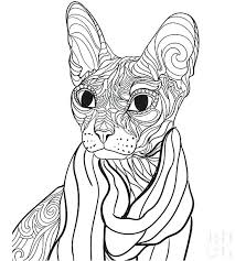 Coloring Pages For Pets Sphinx Cat Coloring Page Coloring Pages
