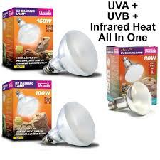 Uvb And Basking Light Arcadia Reptile D3 Uv Basking Lamp All In One Uva Uvb Heat