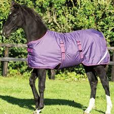 Amigo Foal Turnout Blanket Medium 200g