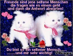 Spr He Guten Morgen F Freunde Spruchwebsite
