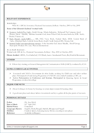 Professional Cv Template Doc Resume Example
