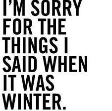 Cold Weather Quotes Mesmerizing Adore Funny Stuff Pinterest Humor Stuffing And