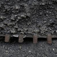 Coal India Ltd Live Stock Price Analysis And Scores