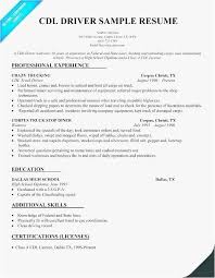 30 Delivery Driver Resume Example Best Resume Templates
