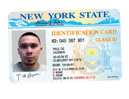 Replacedocument License Driver's – Card id