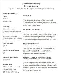 executive summary format for project report executive summary template example