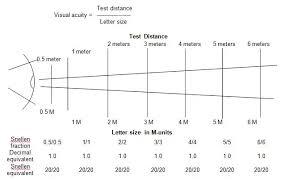 Eyesight Vision Chart Snellen Eye Test Charts Interpretation Precision Vision