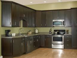 Expresso Kitchen Cabinets Luxury Espresso Painted Kitchen Cabinets Greenvirals Style Dark