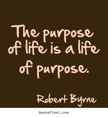 Purpose Of Life Quotes New Purpose In Life Quotes Life Quotes