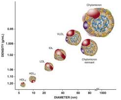 Vldl Cholesterol Levels Chart Vldl Triglyceride Rich Lipoproteins And Remnant Cholesterol