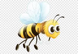Arbeiter Biene Drohne, Biene, Gliederfüßer, Biene png | PNGEgg