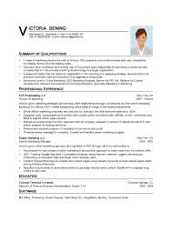 Summary Of Qualifications Professional Experience Resume Template