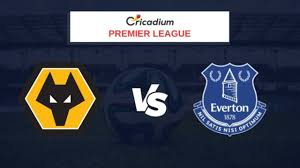 Premier League 2019-20 Matchday 35 Wolverhampton Wanderers vs Everton  Prediction & Dream11 Team Today