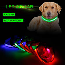 Blinking Lights For Dogs 2019 Led Nylon Pet Dog Collar Night Safety Led Light Flashing Glow In The Dark Small Dog Pet Leash Dog Collar Flashing Safety Collar From Biubiustore