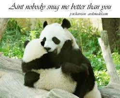 Love Animals Quotes Gorgeous Animal Lover Quotes On QuotesTopics