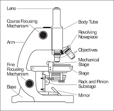 Types Of Microscopes Chart Parts Of A Microscope Microscope Parts Science Diagrams