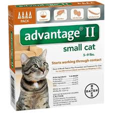 imidacloprid for cats. Plain Cats Inside Imidacloprid For Cats FleaScience