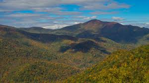 cold mountain essay meanderthals fall foliage time on the blue  meanderthals fall foliage time on the blue ridge parkway a meanderthals fall foliage time on the cold mountain infographic course hero
