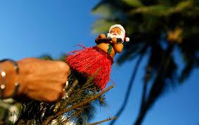 Christmas Tree  WallpaperChristmas Tree Hawaii