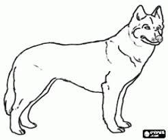 Kleurplaat Cute Hond Puppies Makkelijk Ausmalbilder Hunde