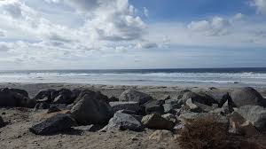 Solana Beach Tide Chart Tide Pool Fun Review Of Cardiff State Beach Encinitas Ca