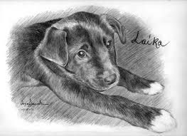 Come Disegnare Un Cane Da Colorare Youtube Con Disegni Facili Da
